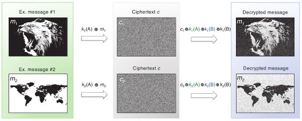 4. Экспериментальная передача данных в канале из согласованных носителей неклонируемых функций. (165Кб)
